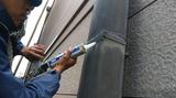 外壁打診調査・補修・塗装・防鳥対策